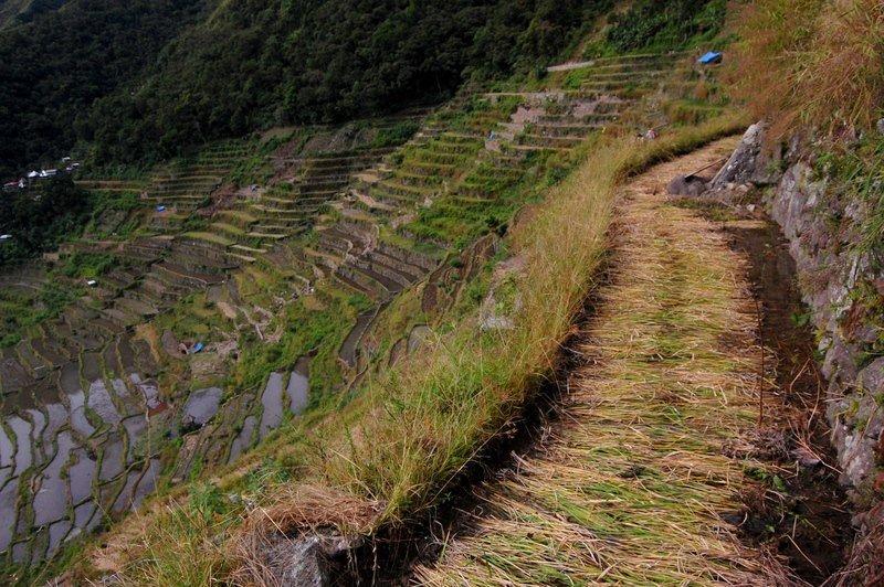 Day 3 of a Philippine Mountain Hiking Trek