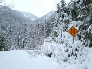 Halfway River Forest Service Road in December 2012