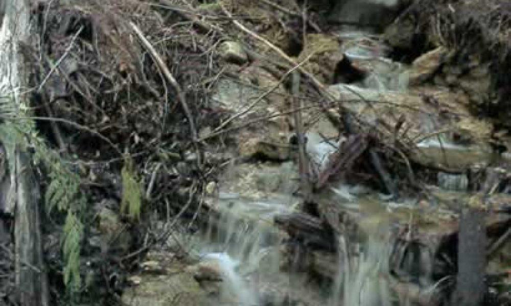 Angel Springs Trail