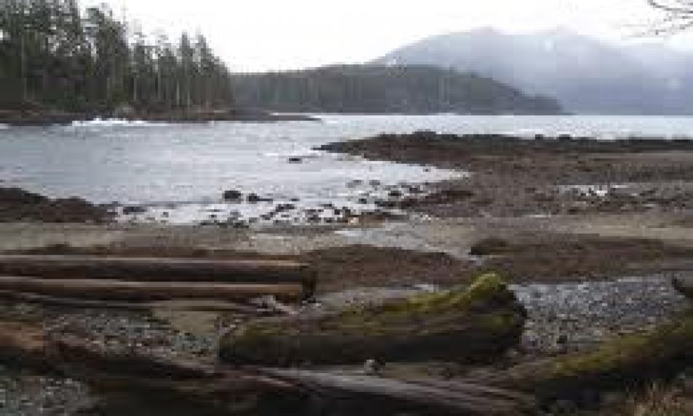 Cone Head Free Camping in Haida Gwaii