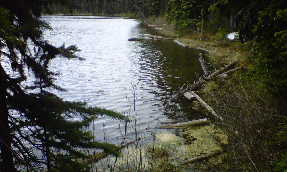 Two John Lake Free Camping – North East of Big White off the 201 FSR.